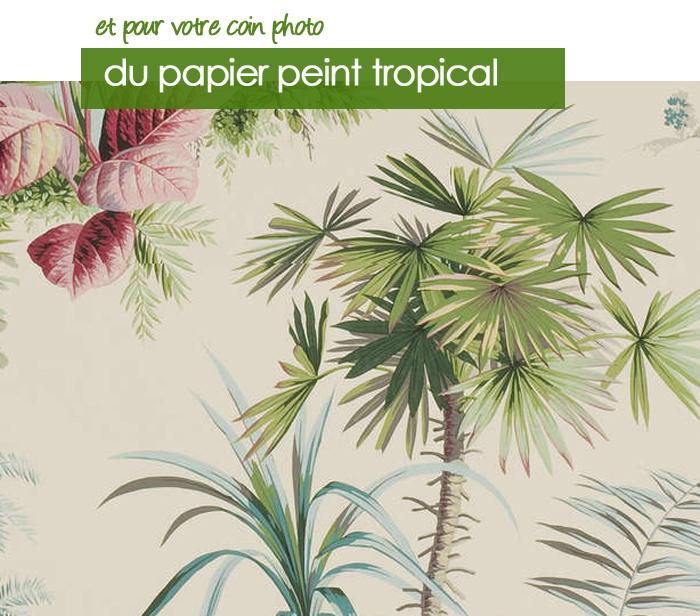Pose papier peint vinyl intisse cholet conseil travaux salle de bain leroy - Pose papier peint intisse ...